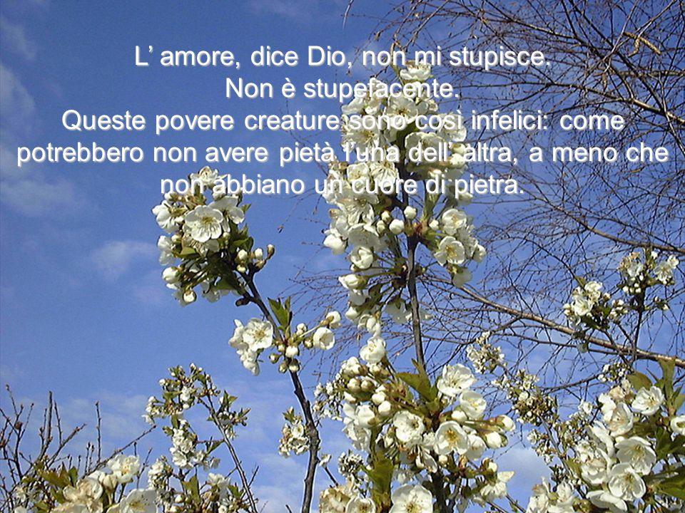 L' amore, dice Dio, non mi stupisce.Non è stupefacente.