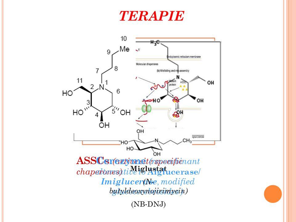 ASSCs (active site specific chaperones) TERAPIE Cerezyme (recombinant alternative to Alglucerase / Imiglucerase, modified glucocerebrosides ) Miglusta