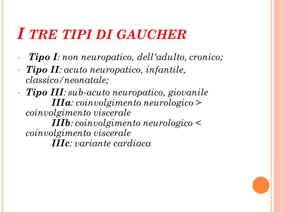I TRE TIPI DI GAUCHER Tipo I : non neuropatico, dell'adulto, cronico; Tipo II : acuto neuropatico, infantile, classico/neonatale; Tipo III : sub-acuto