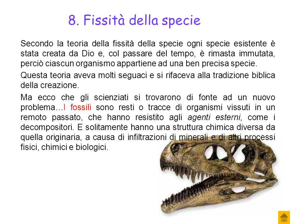 Torniamo a Linneo. Egli aveva suddiviso tutti gli organismi fino ad allora conosciuti in tante specie. Ma si rese conto che per alcuni organismi era m