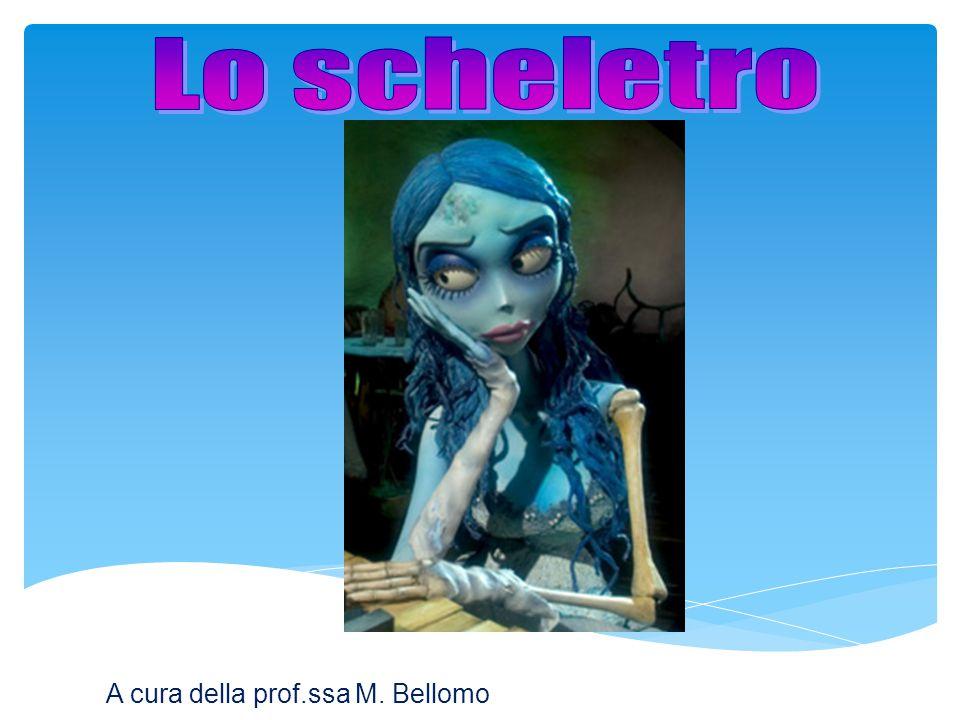 A cura della prof.ssa M. Bellomo