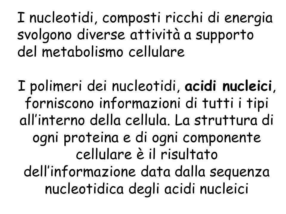 I nucleotidi, composti ricchi di energia svolgono diverse attività a supporto del metabolismo cellulare I polimeri dei nucleotidi, acidi nucleici, for