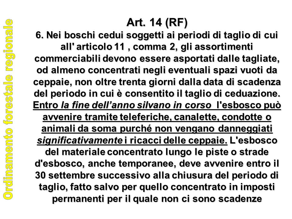 Art. 14 (RF) 6.