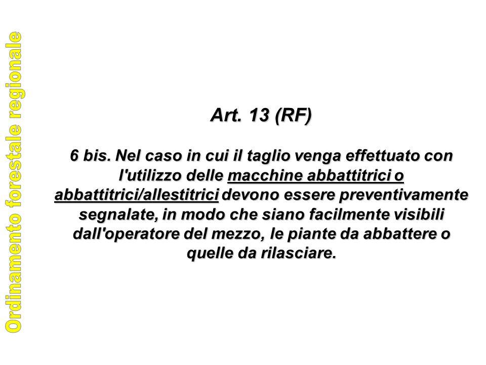 Art. 13 (RF) 6 bis.
