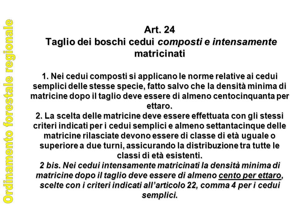 Art. 24 Taglio dei boschi cedui composti e intensamente matricinati 1.