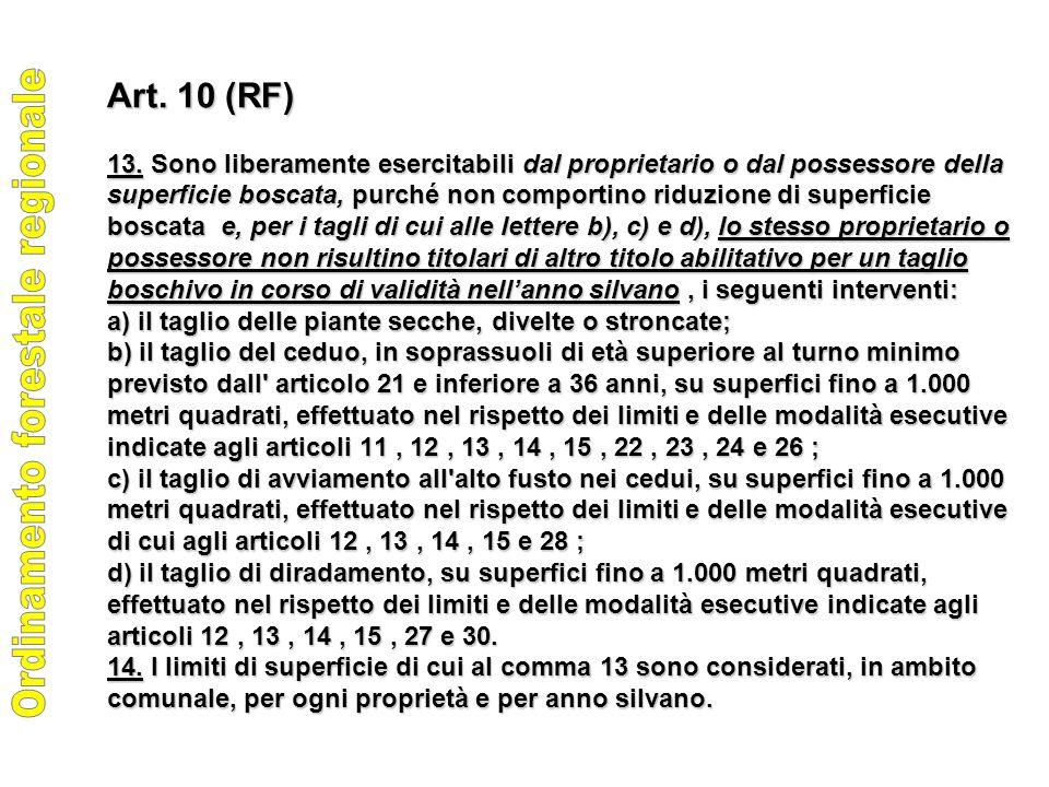 Art. 10 (RF) 13.