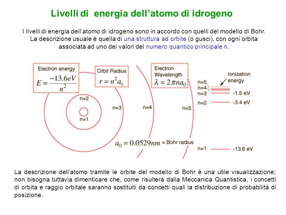I livelli di energia dell'atomo di idrogeno sono in accordo con quelli del modello di Bohr. La descrizione usuale è quella di una struttura ad orbite