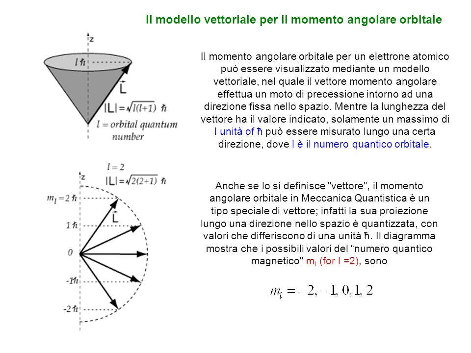 Il modello vettoriale per il momento angolare orbitale Il momento angolare orbitale per un elettrone atomico può essere visualizzato mediante un model