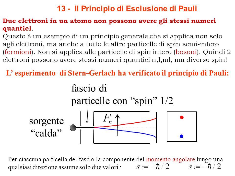 Per ciascuna particella del fascio la componente del momento angolare lungo una qualsiasi direzione assume solo due valori : fascio di particelle con