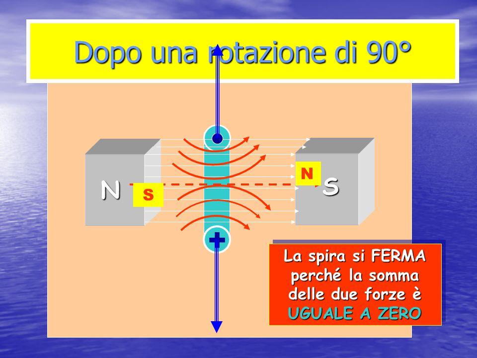 Dopo una rotazione di 90° N S + N S La spira si FERMA perché la somma delle due forze è UGUALE A ZERO