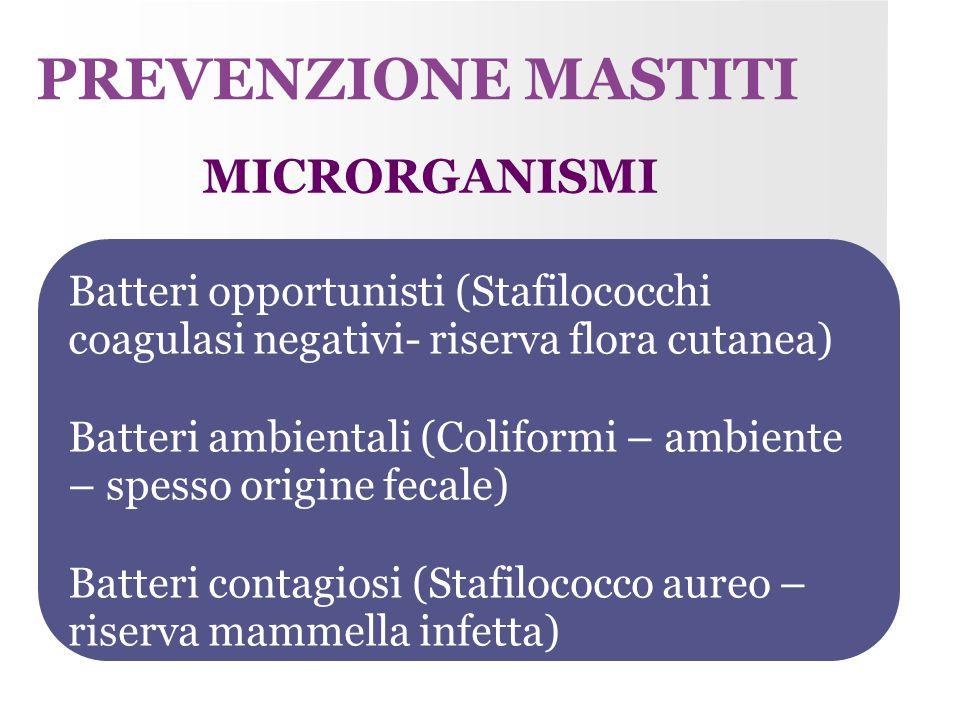 Batteri opportunisti (Stafilococchi coagulasi negativi- riserva flora cutanea) Batteri ambientali (Coliformi – ambiente – spesso origine fecale) Batte