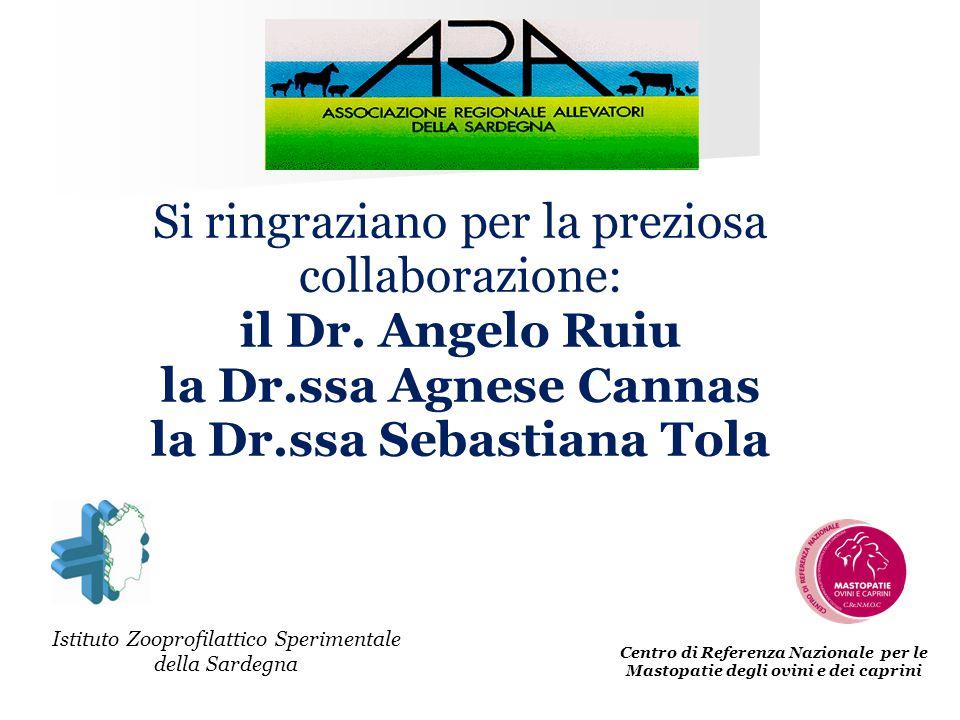 Centro di Referenza Nazionale per le Mastopatie degli ovini e dei caprini Si ringraziano per la preziosa collaborazione: il Dr. Angelo Ruiu la Dr.ssa