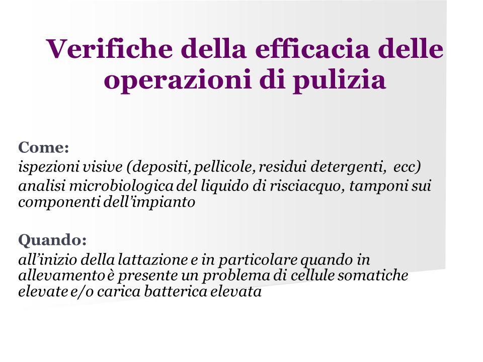 Verifiche della efficacia delle operazioni di pulizia Come: ispezioni visive (depositi, pellicole, residui detergenti, ecc) analisi microbiologica del