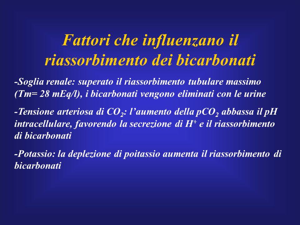 Fattori che influenzano il riassorbimento dei bicarbonati -Soglia renale: superato il riassorbimento tubulare massimo (Tm= 28 mEq/l), i bicarbonati ve