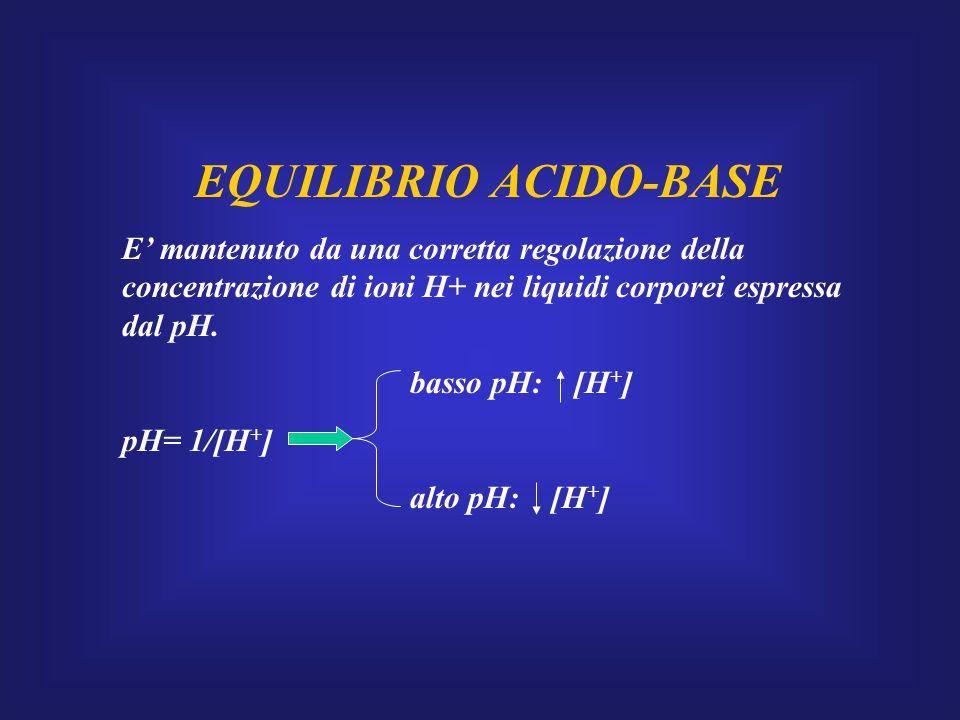 EQUILIBRIO ACIDO-BASE E' mantenuto da una corretta regolazione della concentrazione di ioni H+ nei liquidi corporei espressa dal pH. basso pH: [H + ]