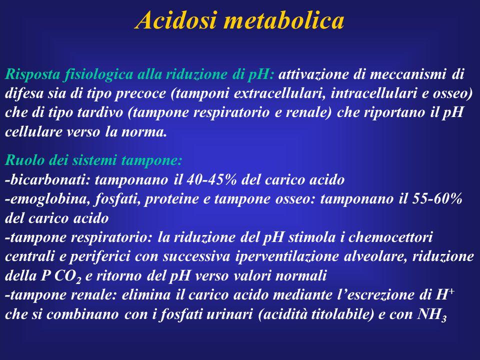 Acidosi metabolica Risposta fisiologica alla riduzione di pH: attivazione di meccanismi di difesa sia di tipo precoce (tamponi extracellulari, intrace