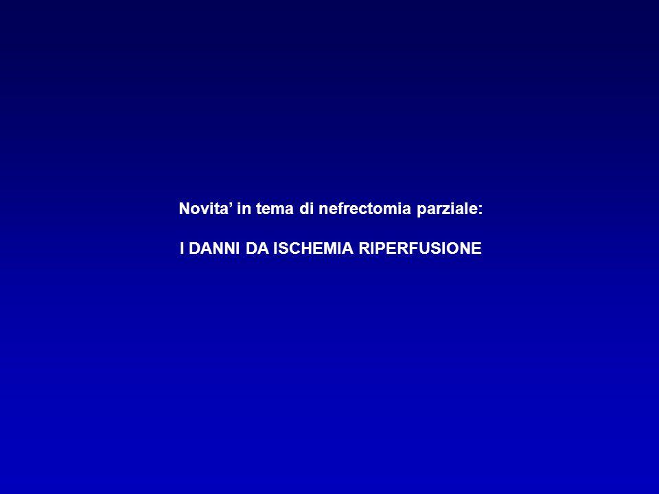 Novita' in tema di nefrectomia parziale: I DANNI DA ISCHEMIA RIPERFUSIONE