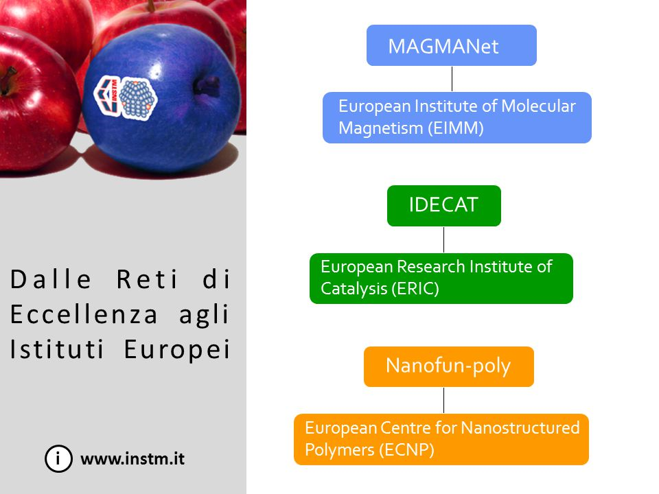Dalle Reti di Eccellenza agli Istituti Europei i www.instm.it MAGMANet IDECAT Nanofun-poly European Institute of Molecular Magnetism (EIMM) European Research Institute of Catalysis (ERIC) European Centre for Nanostructured Polymers (ECNP)