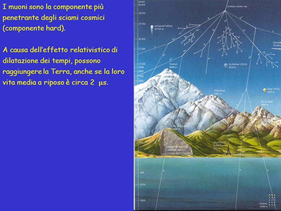 I muoni sono la componente più penetrante degli sciami cosmici (componente hard). A causa dell'effetto relativistico di dilatazione dei tempi, possono