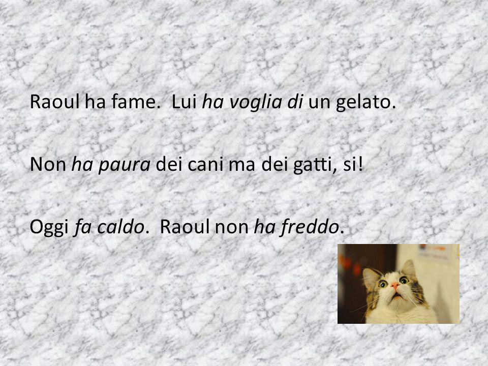 Raoul ha fame. Lui ha voglia di un gelato. Non ha paura dei cani ma dei gatti, si.