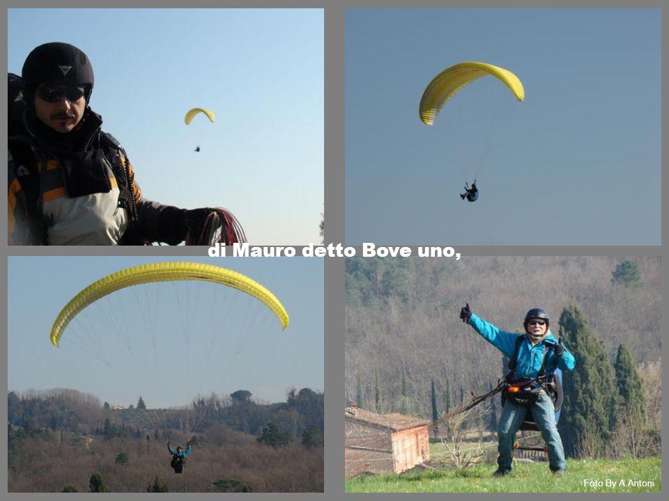 di Mauro detto Bove uno, Foto By A.Antoni