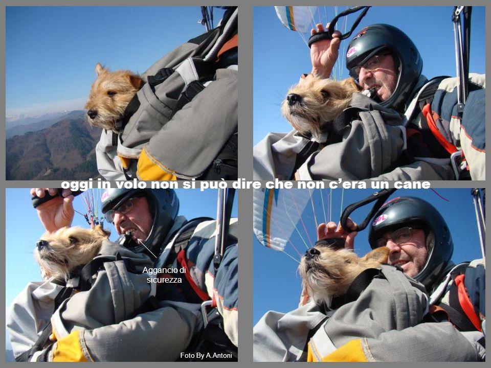 oggi in volo non si può dire che non c'era un cane Foto By A.Antoni Aggancio di sicurezza