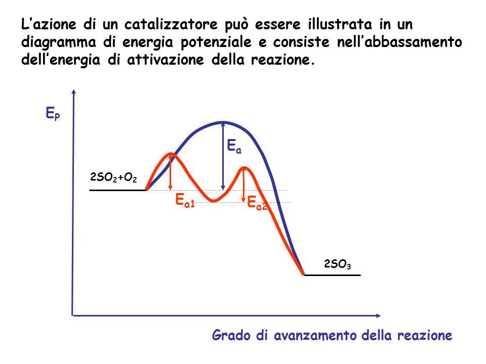 L'azione di un catalizzatore può essere illustrata in un diagramma di energia potenziale e consiste nell'abbassamento dell'energia di attivazione dell