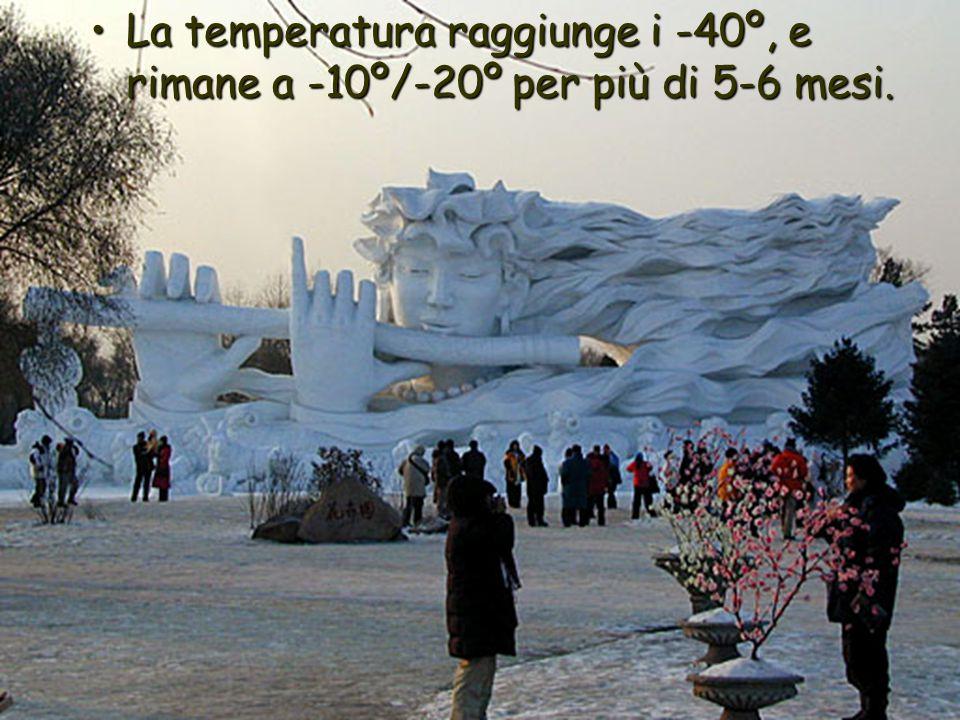 La temperatura raggiunge i -40º, e rimane a -10º/-20º per più di 5-6 mesi.La temperatura raggiunge i -40º, e rimane a -10º/-20º per più di 5-6 mesi.