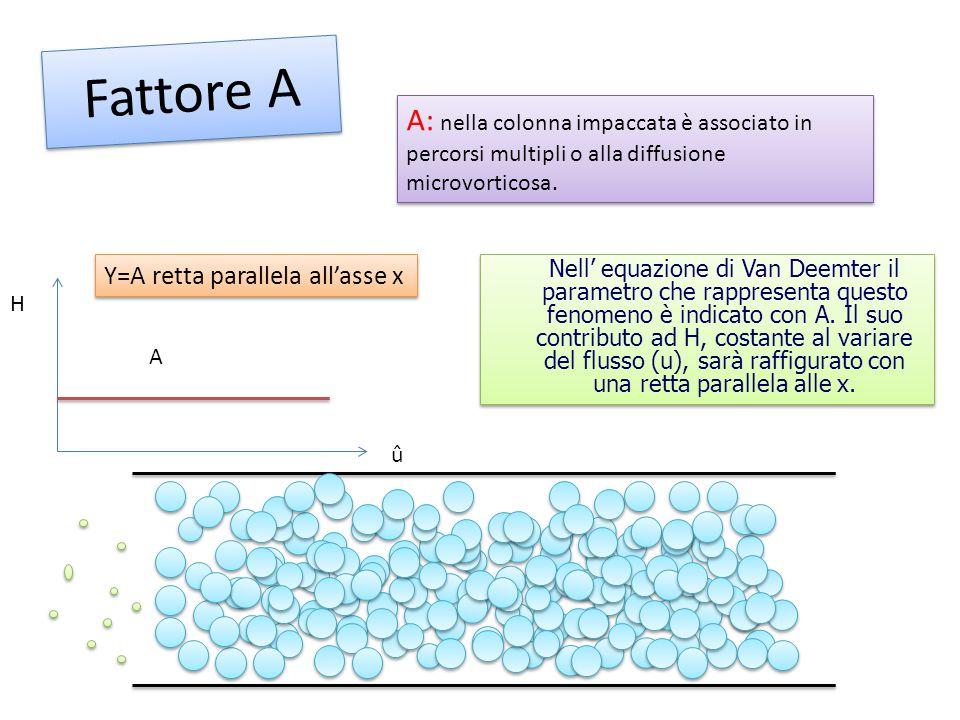 Fattore A H û A A: nella colonna impaccata è associato in percorsi multipli o alla diffusione microvorticosa. Y=A retta parallela all'asse x Nell' equ
