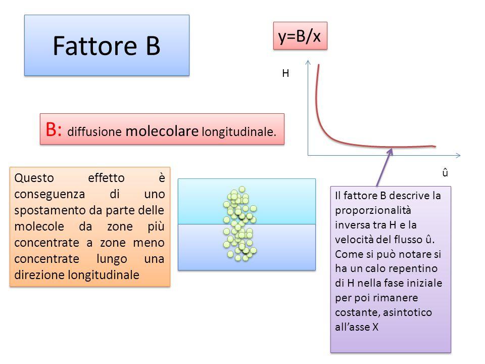 Fattore B B: diffusione molecolare longitudinale. Questo effetto è conseguenza di uno spostamento da parte delle molecole da zone più concentrate a zo