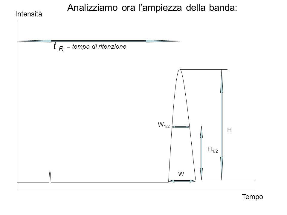 Analizziamo ora l'ampiezza della banda: t R = tempo di ritenzione W W 1/2 H 1/2 Tempo Intensità H