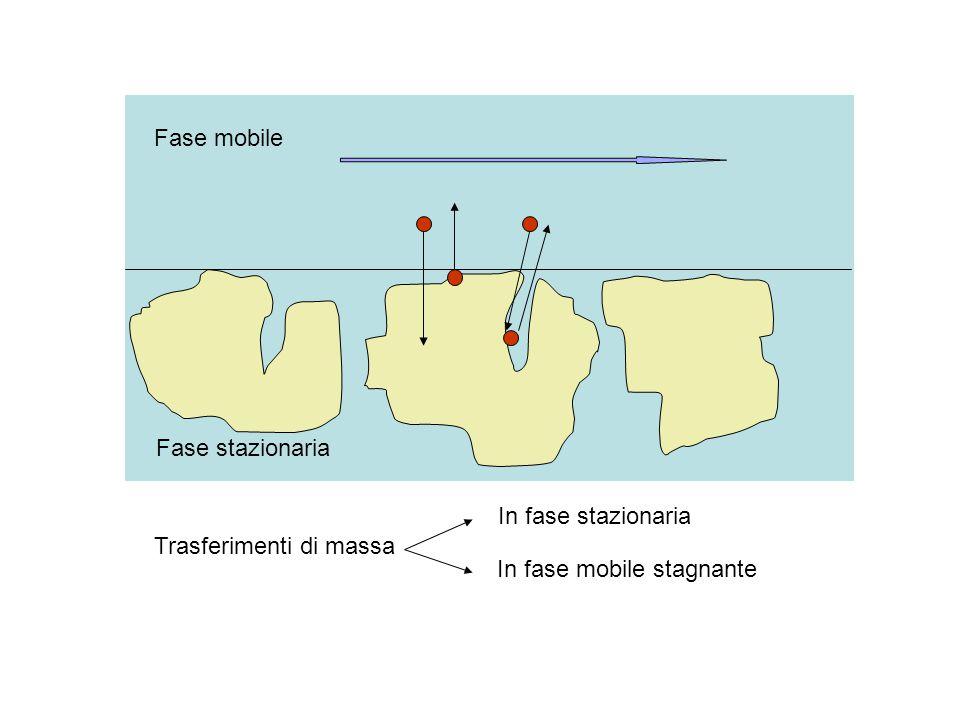 Fase stazionaria Fase mobile Trasferimenti di massa In fase stazionaria In fase mobile stagnante
