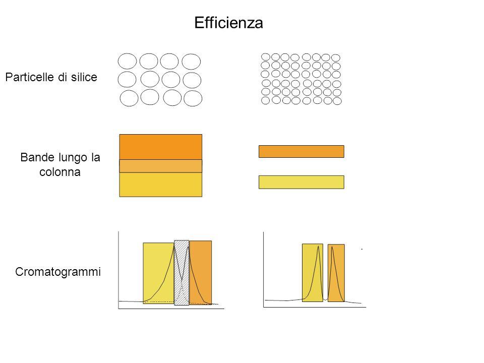 Efficienza Particelle di silice Bande lungo la colonna Cromatogrammi
