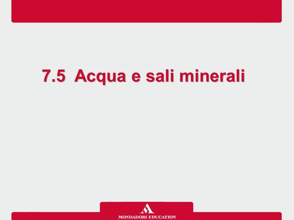 7.5 Acqua e sali minerali