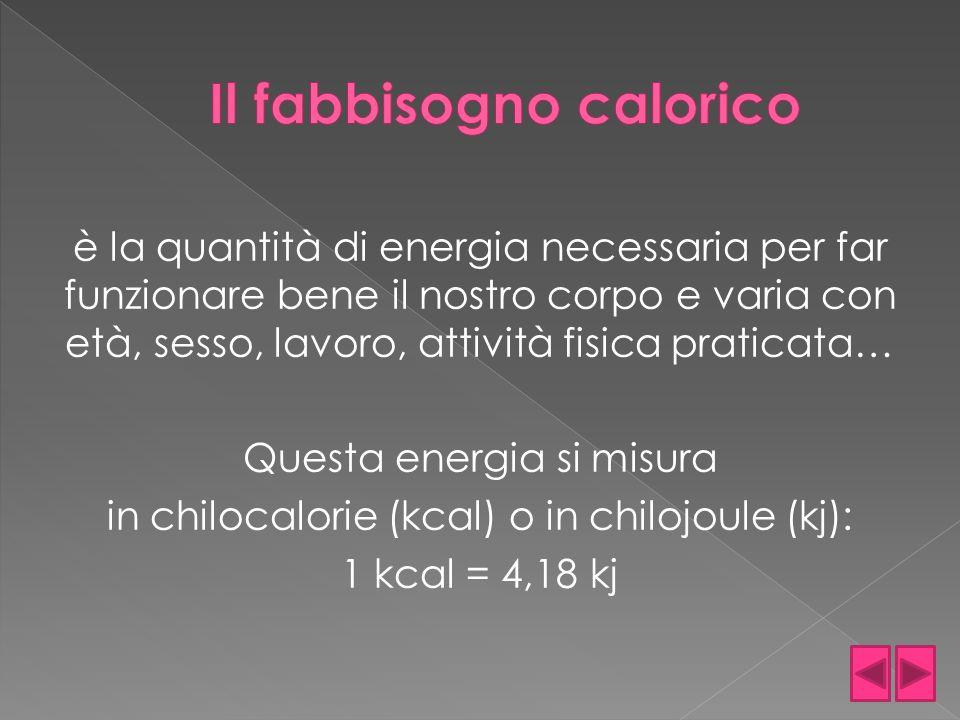 è la quantità di energia necessaria per far funzionare bene il nostro corpo e varia con età, sesso, lavoro, attività fisica praticata… Questa energia si misura in chilocalorie (kcal) o in chilojoule (kj): 1 kcal = 4,18 kj