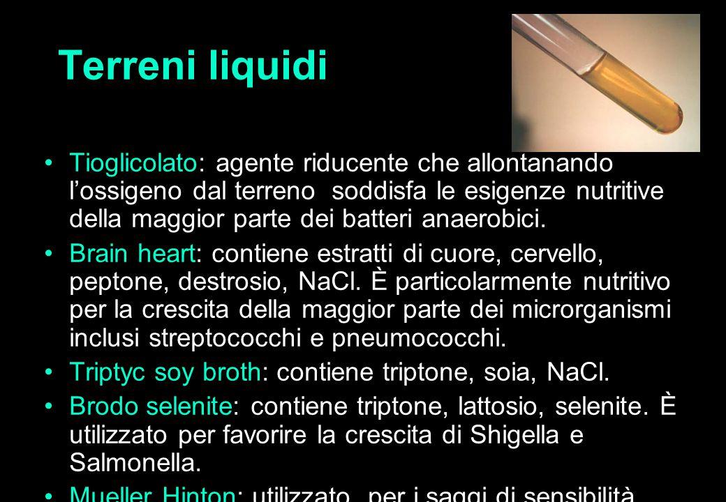 22 Terreni liquidi Tioglicolato: agente riducente che allontanando l'ossigeno dal terreno soddisfa le esigenze nutritive della maggior parte dei batteri anaerobici.