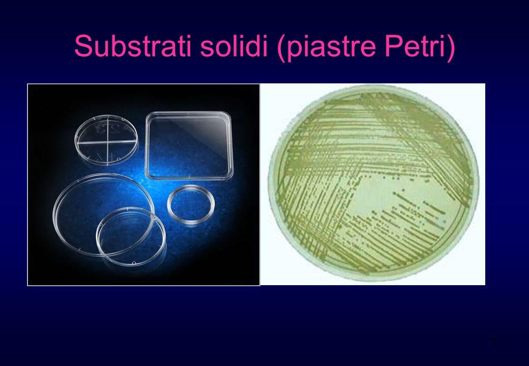 7 Substrati solidi (piastre Petri)