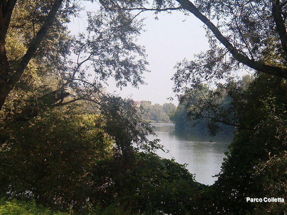 Parco Colletta