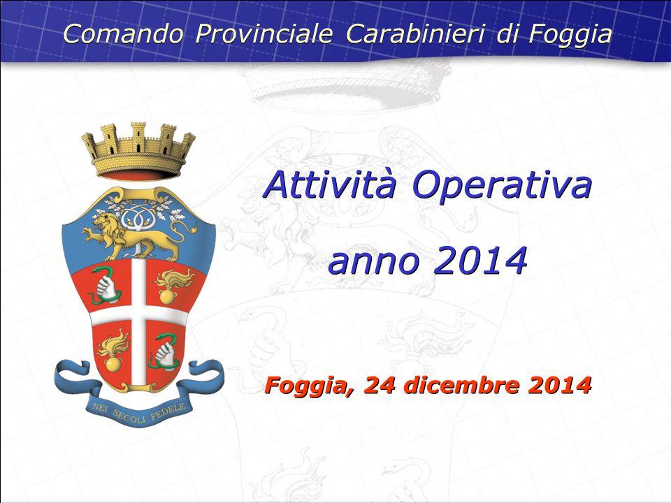 Attività Operativa anno 2014 Foggia, 24 dicembre 2014 Attività Operativa anno 2014 Foggia, 24 dicembre 2014 Comando Provinciale Carabinieri di Foggia