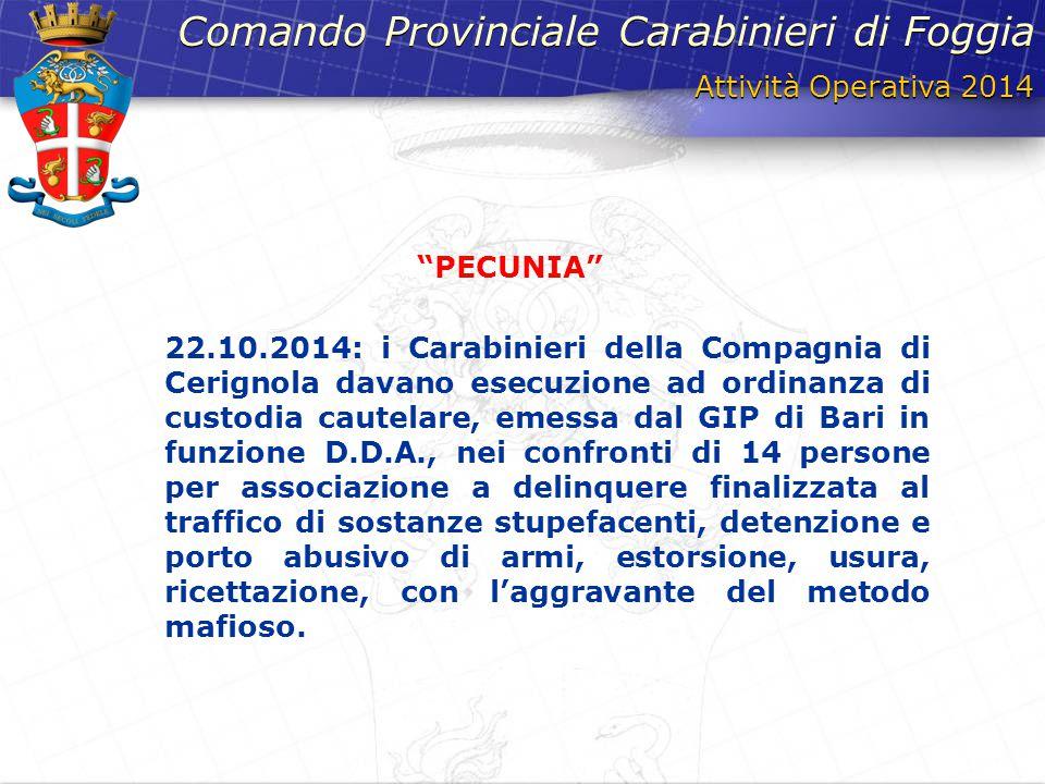 Attività Operativa 2014 Comando Provinciale Carabinieri di Foggia 22.10.2014: i Carabinieri della Compagnia di Cerignola davano esecuzione ad ordinanz