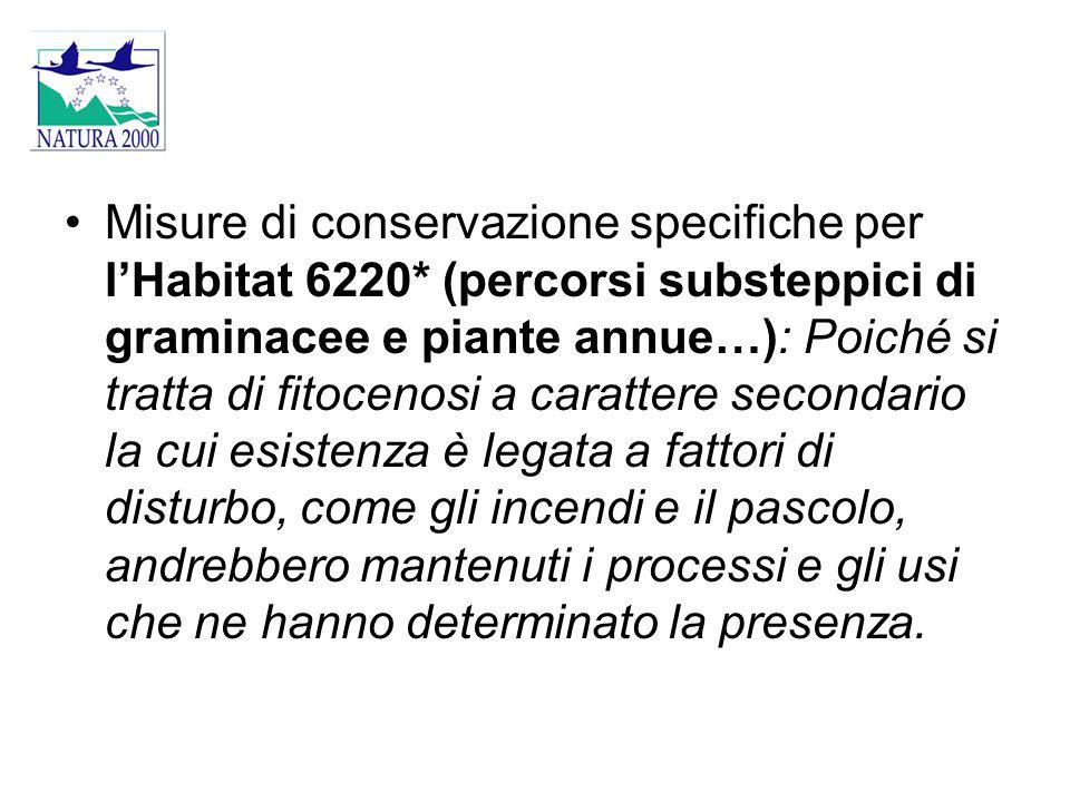 Misure di conservazione specifiche per l'Habitat 6220* (percorsi substeppici di graminacee e piante annue…): Poiché si tratta di fitocenosi a caratter