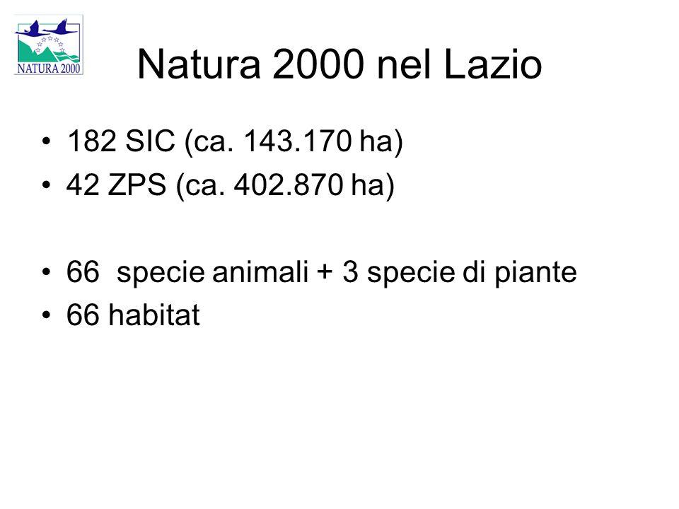 Natura 2000 nel Lazio 182 SIC (ca. 143.170 ha) 42 ZPS (ca. 402.870 ha) 66 specie animali + 3 specie di piante 66 habitat