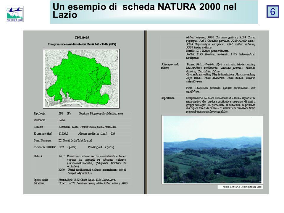 Un esempio di scheda NATURA 2000 nel Lazio 6