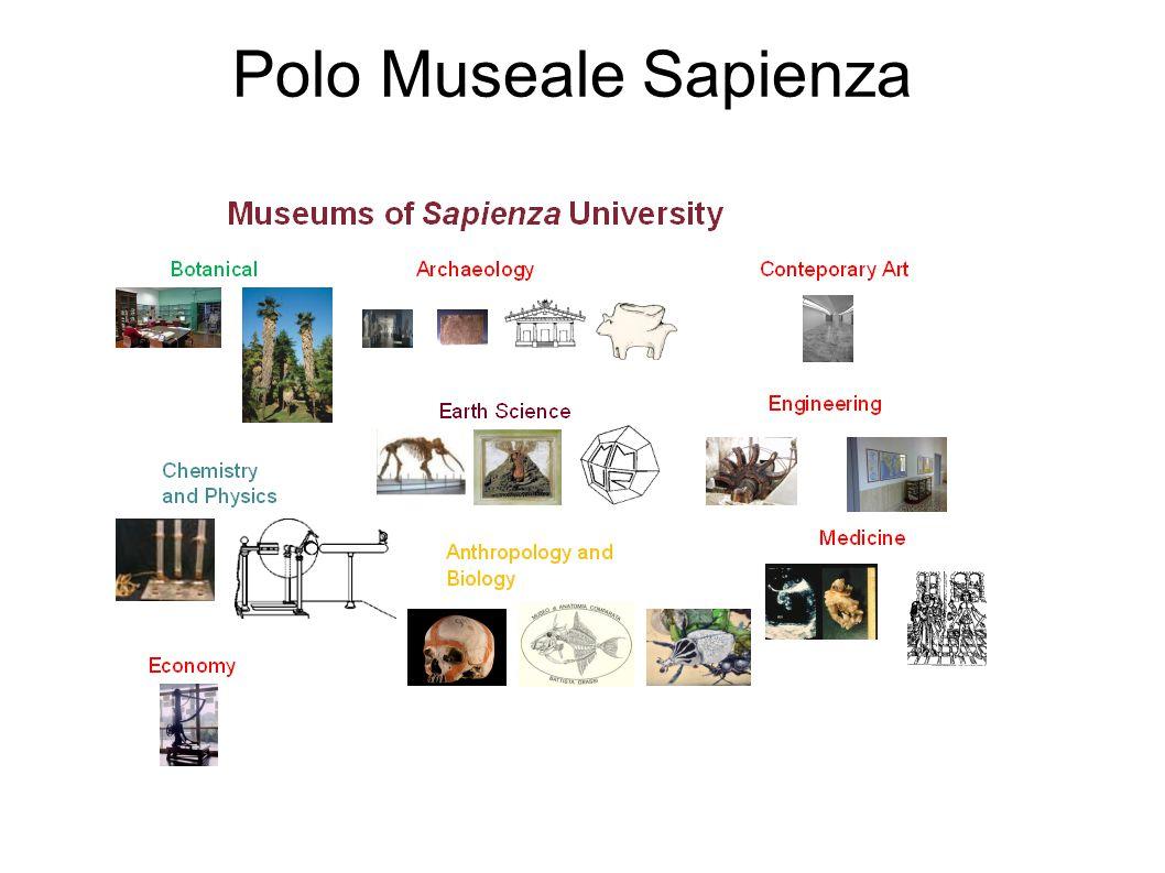 5 novembre 2010 Vincenza Ferrara Musei Universitari - Scuole Visite annuali legate ai programmi scolastici Rapporti tra insegnanti e operatori museali Scuola Museo