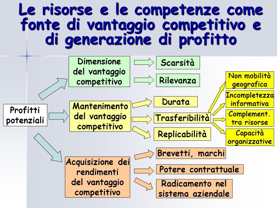 Le risorse e le competenze come fonte di vantaggio competitivo e di generazione di profitto Dimensione del vantaggio competitivo Profitti potenziali M