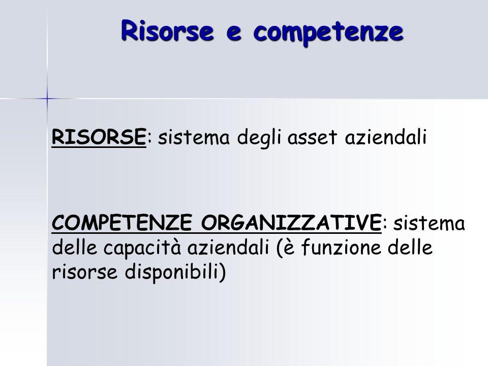 Risorse e competenze RISORSE: sistema degli asset aziendali COMPETENZE ORGANIZZATIVE: sistema delle capacità aziendali (è funzione delle risorse dispo