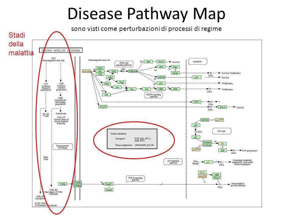 Disease Pathway Map sono visti come perturbazioni di processi di regime Stadi della malattia