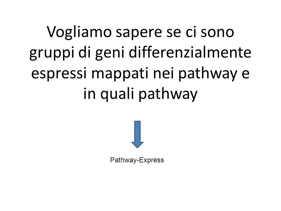 Vogliamo sapere se ci sono gruppi di geni differenzialmente espressi mappati nei pathway e in quali pathway Pathway-Express