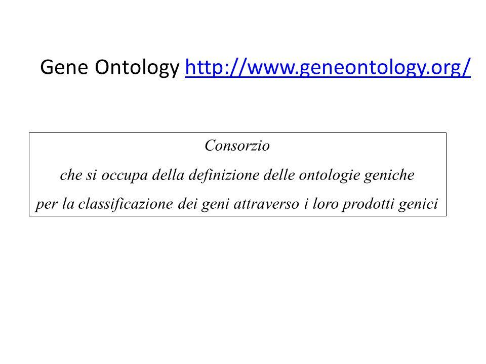 Gene Ontology http://www.geneontology.org/http://www.geneontology.org/ Consorzio che si occupa della definizione delle ontologie geniche per la classificazione dei geni attraverso i loro prodotti genici
