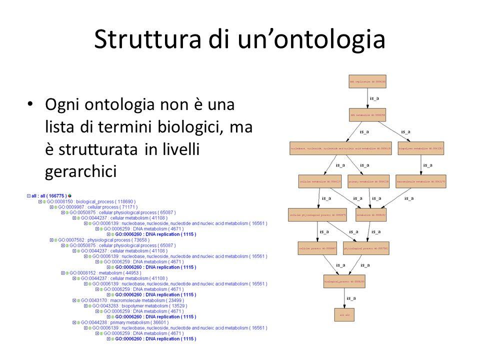 Ogni ontologia non è una lista di termini biologici, ma è strutturata in livelli gerarchici